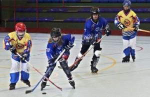 hockey-alevin-ult2